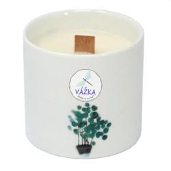 Veľká botanická sviečka Pivónia